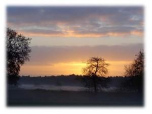 Heukelom in de ochtend (foto: Loes Westgeest)