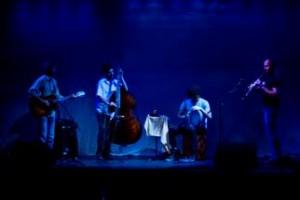 muziek natuurtheater