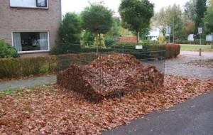 bladkorven gemeente oisterwijk 22 9 2014