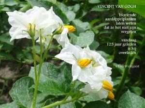 Gedicht Van Loes Vincent Van Gogh Ondernemend Moergestel
