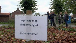 Hoe staat het met het project Groen voor Grijs in Oisterwijk